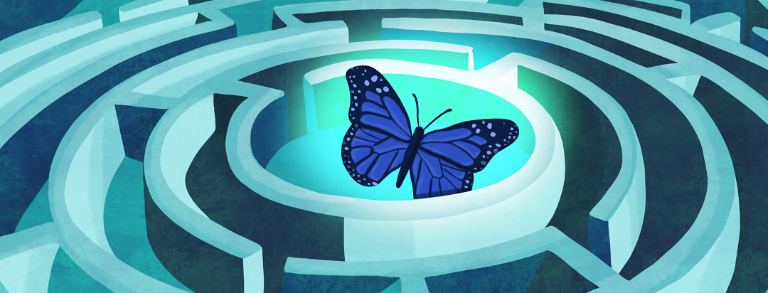 A lupus butterfly is illuminated in the center of a winding labyrinth.