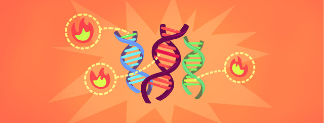 Research Uncovers How DNA Affects Lupus Severity image