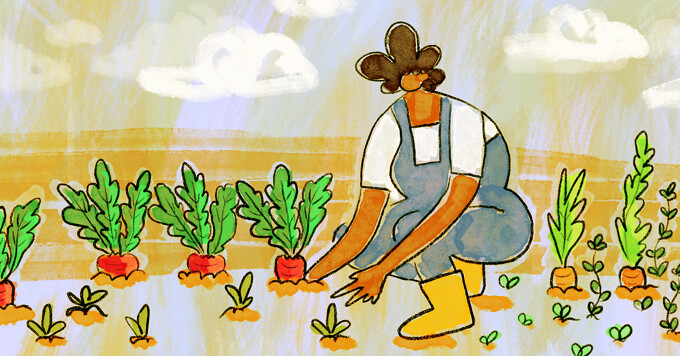 A woman plants radishes and carrots in a garden.