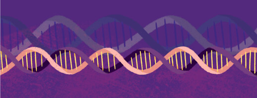 Lupus and Genetics image