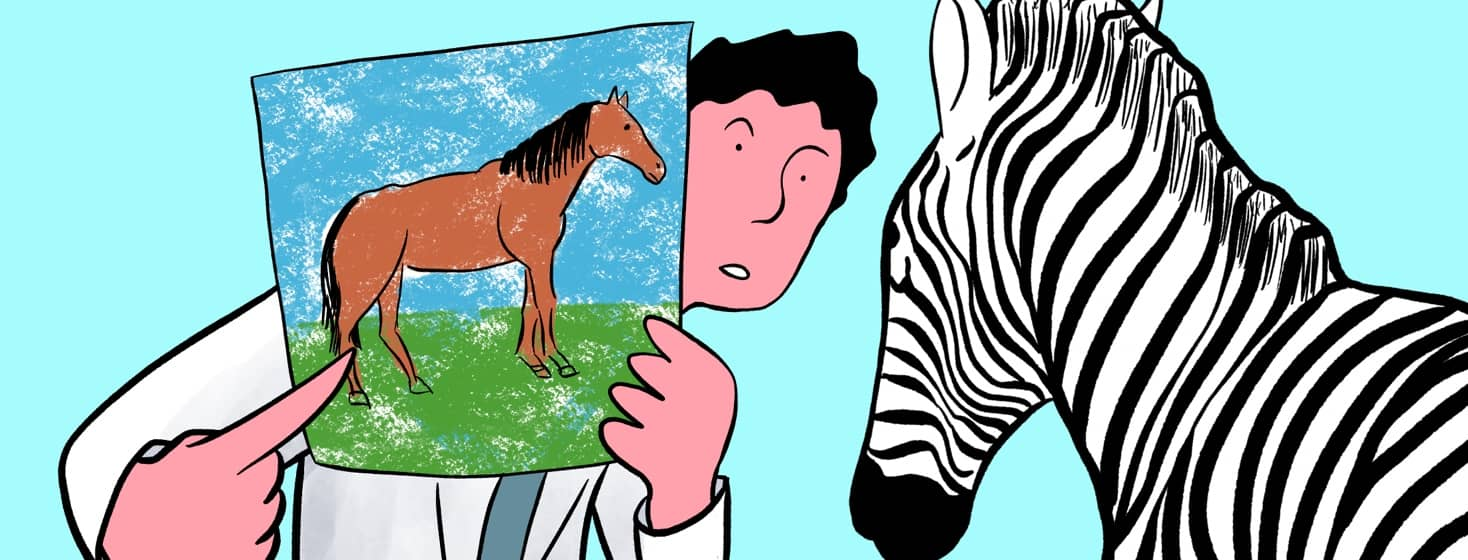 doctor pointing at a picture of a horse in font of a zebra